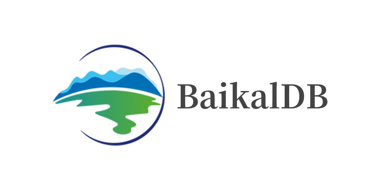BaikalDB
