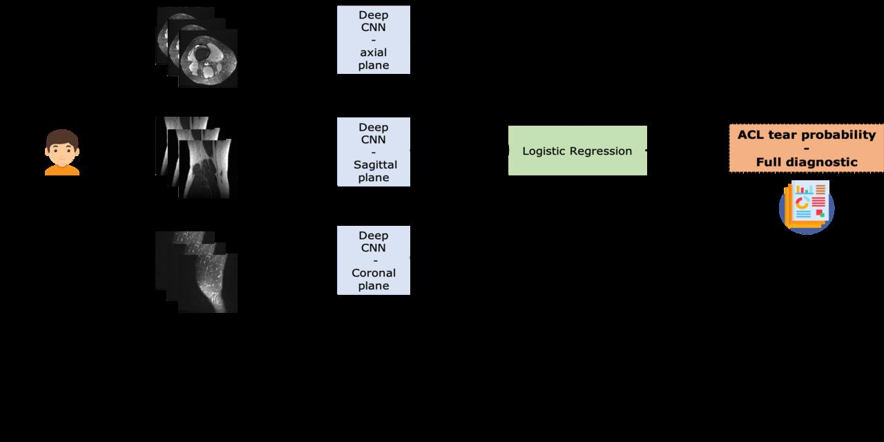 mri-images · GitHub Topics · GitHub