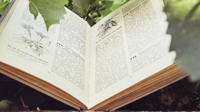 Mind-Expanding-Books