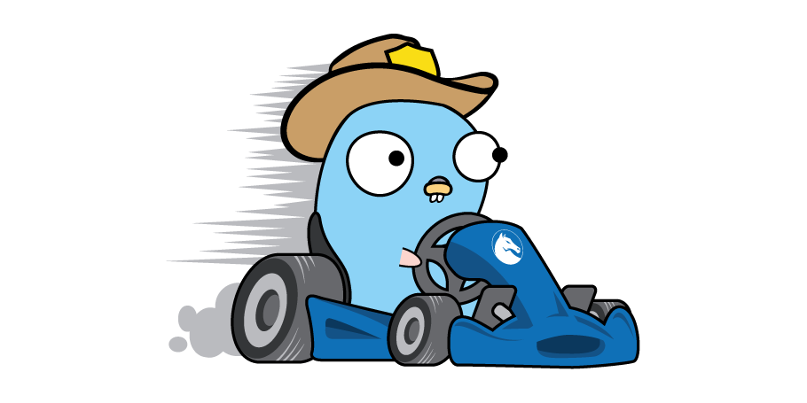 GoKart is a static analysis tool for Go that finds vulnerabilities using the SSA (single static assignment) form of Go source code. It is capable of t